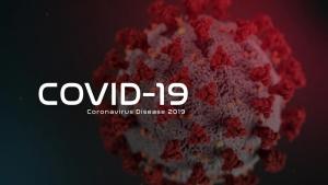 A coronavirus model