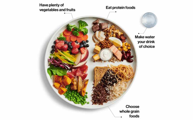 An illustration of a healthy nutritionally balanced plate