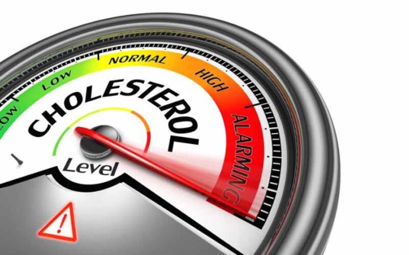 Cholesterol alert meter