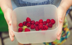 Child holding a bowl of berries