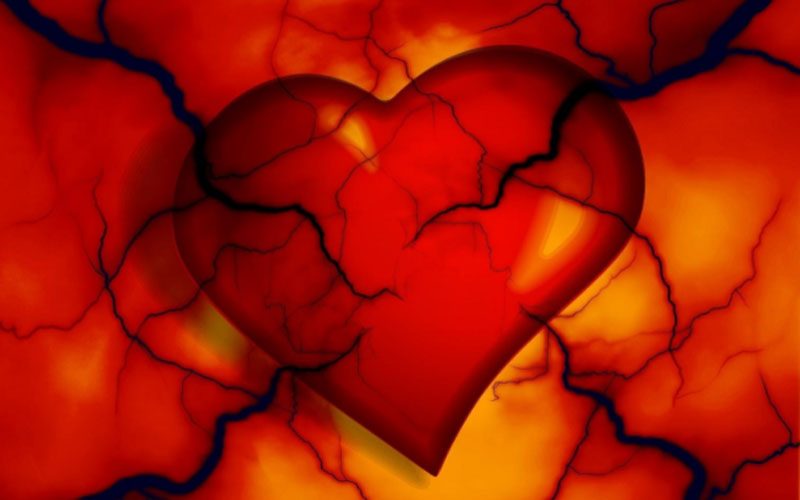 Heart and Veins